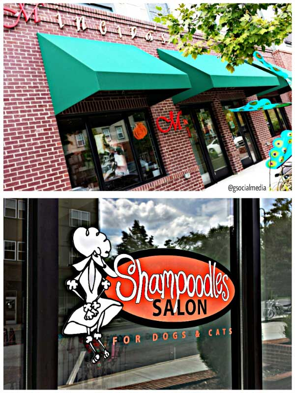 asheville hair salon and pet salon