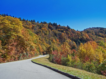 asheville autumn blue ridge parkway