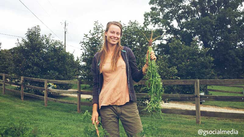 asheville farm girl crops