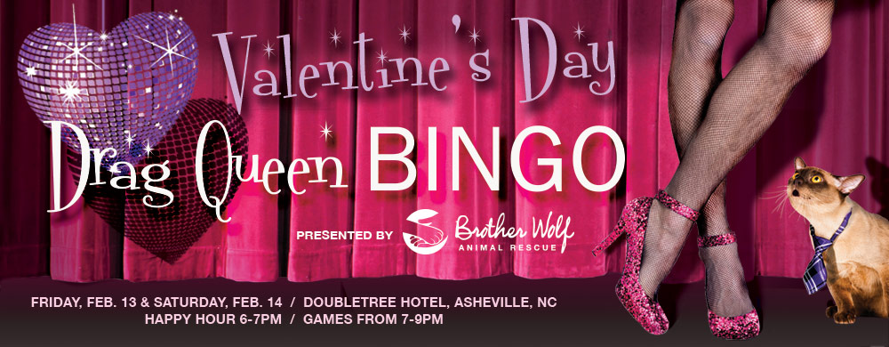 asheville drag queen bingo 2015