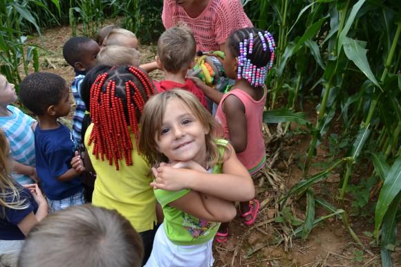 Asheville Corn Maze Eliada