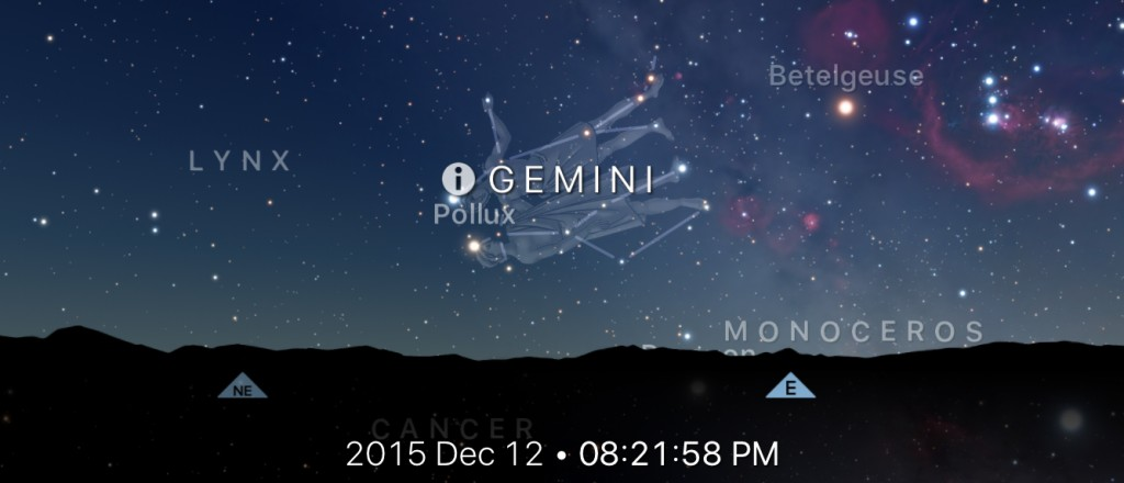 Geminid In The Sky