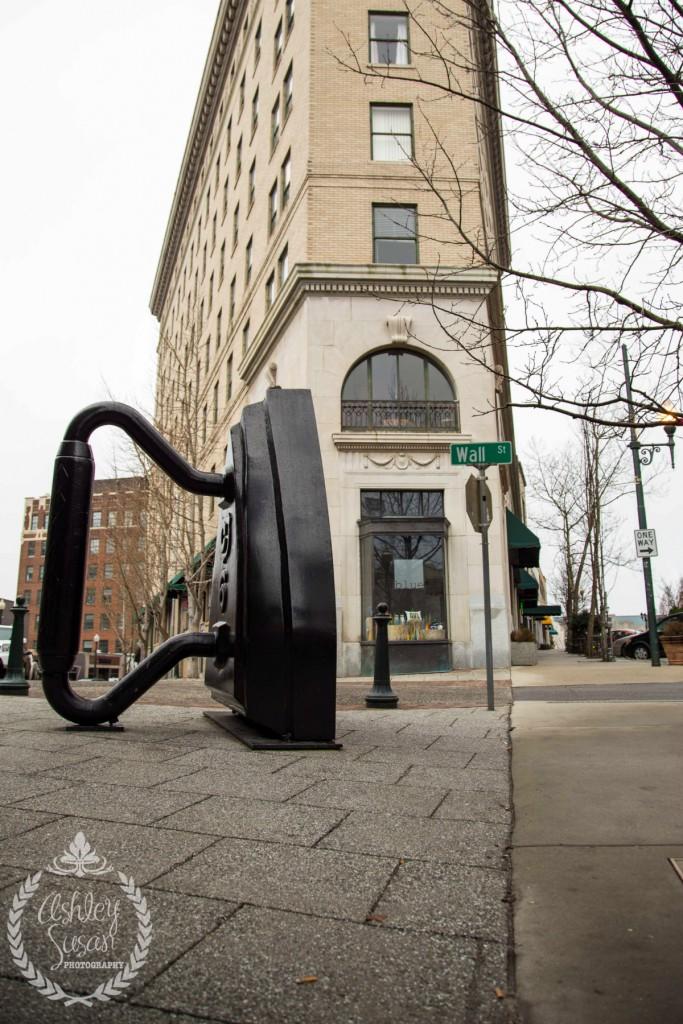 Asheville's Flat Iron