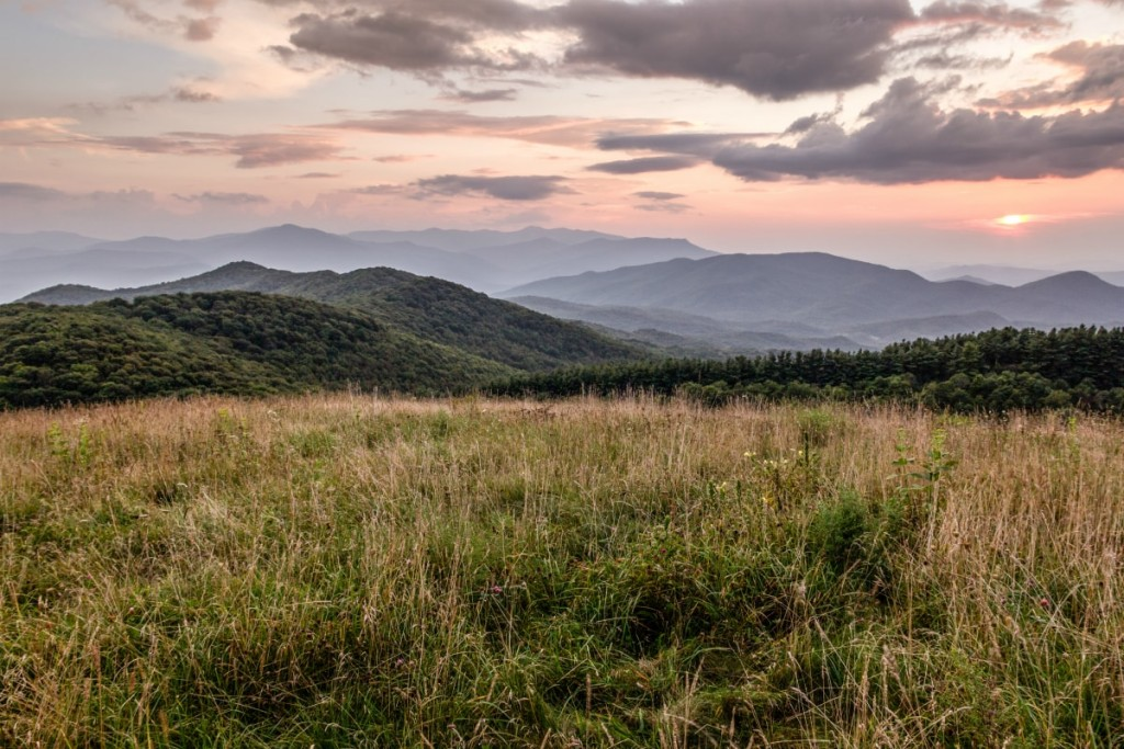 Letters From Asheville & Beyond