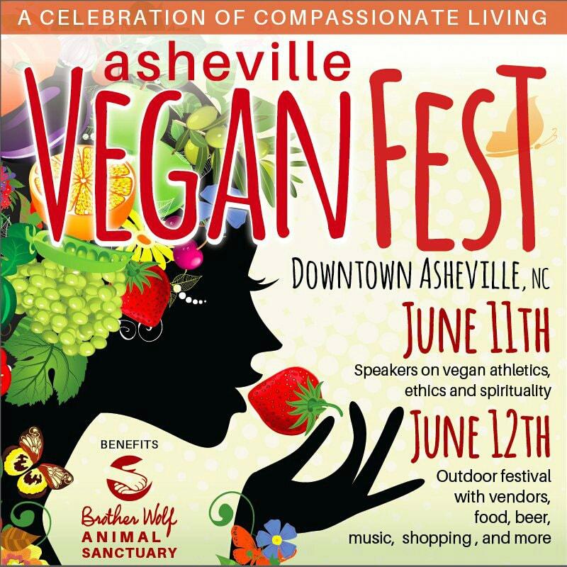 Asheville VeganFest 2016