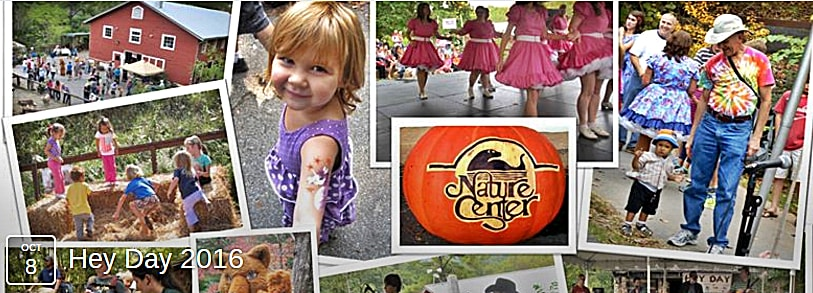 Asheville Hey Day Fall Festival 2016